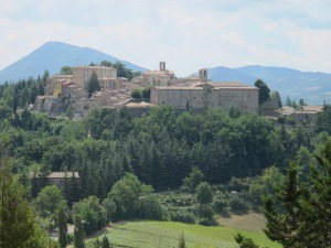 Montone for Neal 010