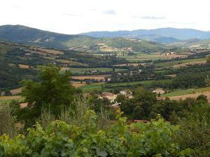 Valle Niccone