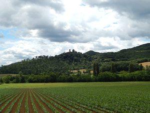 Niccone Valley
