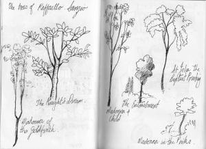 Raphael's trees
