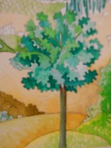 Montecuccio Oak