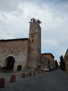 Porta Consolare with olive trees