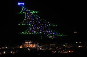 Gubbio Tree